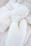 Fascia del cappotto di pelliccia fotografia stock libera da diritti