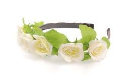 Fascia del fiore Immagini Stock