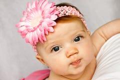 Fascia del fiore del bambino Fotografie Stock Libere da Diritti