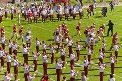 Fascia dell'università di Stato della Florida Fotografie Stock Libere da Diritti