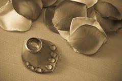 Fascia di cerimonia nuziale sui petali di Rosa immagine stock libera da diritti