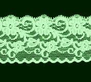 Fascia floreale verde del merletto Immagine Stock