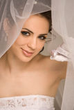 Fascinating bride Stock Images