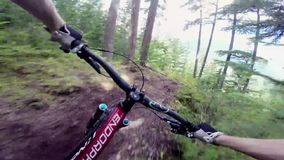 Incredible first person point of view pov on professional biker riding mtb downhill on dangerous obstacle forest road stock video footage