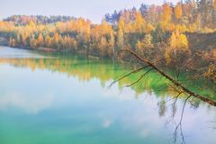 Fascinating pond. Beautiful bright autumn landscape. Yellow trees in enchanting forest. Leaves fall from branches on sunny autumn. Day. Golden trees in park stock photos