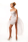Fascinating standing bride Stock Photography