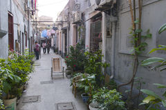 Fascinating streets and trades of Shanghai, China: one of the  Stock Image