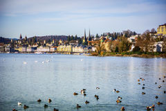 Fascinating view of Lucerne Lake in Switzerland Royalty Free Stock Photos
