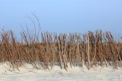 Fascine voor de duinbescherming op het Eiland Sylt Stock Afbeelding