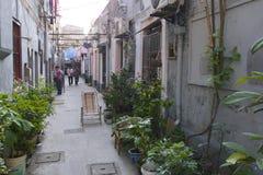 Fascinerande gator och handlar av Shanghai, Kina: en av fotografering för bildbyråer