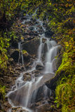 Fascinerande vattenfall i bergen Arkivfoto