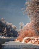 Fascinerend de winterlandschap Royalty-vrije Stock Afbeelding