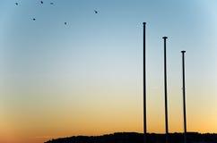 Fascinerende zonsondergang met vogels Royalty-vrije Stock Fotografie