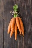 Fascio di giovani carote Immagini Stock Libere da Diritti