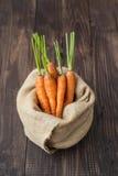 Fascio di giovani carote Immagine Stock Libera da Diritti