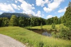 Fascynować, formatów typ zielone łąki, krawędzie i drewna Alpejscy pogórza w lecie zdjęcie royalty free