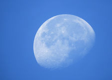 Fase da lua no dia Imagens de Stock