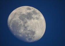 Fase da lua no dia Imagem de Stock