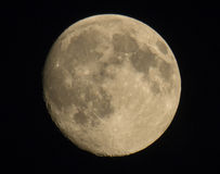 Fase della luna piena Fotografie Stock