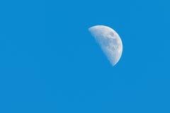 Fase della mezza luna durante il giorno Fotografie Stock Libere da Diritti