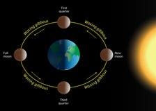 Fase lunar Imagen de archivo libre de regalías