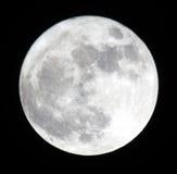 Fase van de maan, volle maan. Stock Afbeeldingen