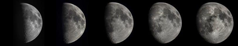 5 faser av den växande månen Arkivfoto