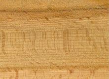 Fasern des Baums durch CU Hintergrund Lizenzfreie Stockfotografie
