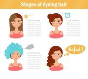 Fases do cabelo de tingidura Foto de Stock