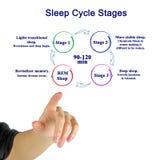 Fases do ciclo do sono imagem de stock royalty free