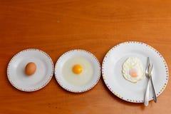 Fases do ovo imagens de stock