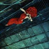 Fashhion красной розы Стоковые Изображения