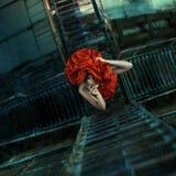 Fashhion красной розы Стоковые Изображения RF