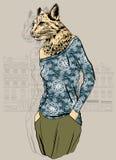 Fashion Animal, Lynx portrait Royalty Free Stock Photography