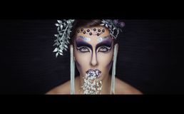 Silver art make up royalty free stock photography