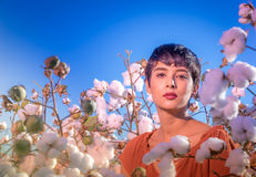 Fashion art photo woman in cotton field royalty free stock photos