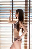 Fashion art photo of young sensual lady at the window Royalty Free Stock Photo