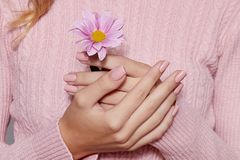 Fashion art skin care of hands and pink flowers in hands of women stock photos