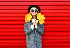 Fashion autumn happy smiling woman holds yellow maple leaves stock image