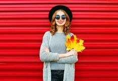 Fashion autumn portrait smiling woman holds yellow maple leaves Stock Image