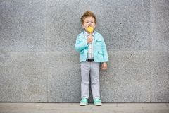 Fashion kid with lollipop near gray wall stock photography