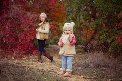 Fashion baby girls sisters stylish dressed brunnette and blond wearing warm autumn clothes jackets posing happy together in colour. Ful forest foliage.Face with Stock Photography