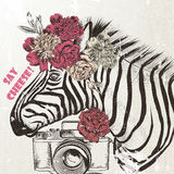 Fashion background with cute zebra trendy background Royalty Free Stock Photos