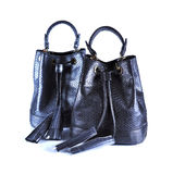 Fashion bags animals skins on background Stock Images