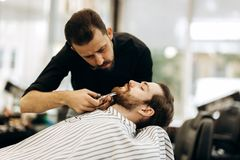 Fashion barber with mustache dressed in a black shirt with a red bow tie trims men`s beard in the barbershop royalty free stock photo