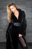 Fashion beautiful blonde woman posing in fur coat. Winter Girl Model in Luxury clothes and furry collar on gray background Royalty Free Stock Photography