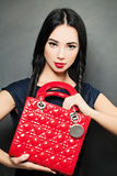 Fashion Beauty Portrait of Woman with Handbag Stock Image