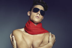 Fashion beauty portrait of young man with sunglasses and scarf Stock Images