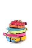 Fashion belts for women Stock Image