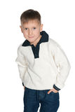 Fashion boy in the sweater Royalty Free Stock Image